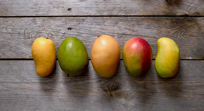 Mango varieties learn about different types of mangoes varieties throughout the year youll most likely find at least one mango of the six varieties described below each mango has a unique flavor and texture ccuart Image collections