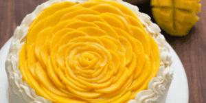 Natashas Kitchen Mango Cake