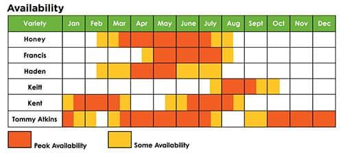 When are mangos in season? Mango availability chart