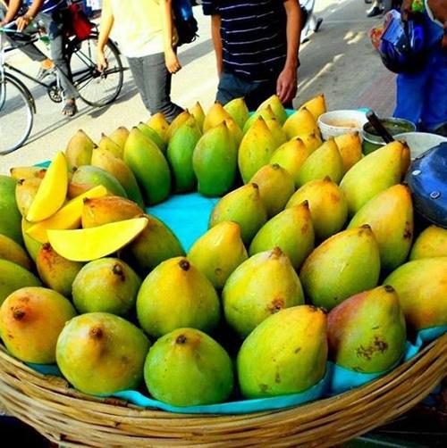 Mangos in India - basket full of mangos