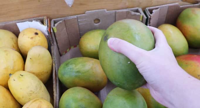 How to choose a ripe mango