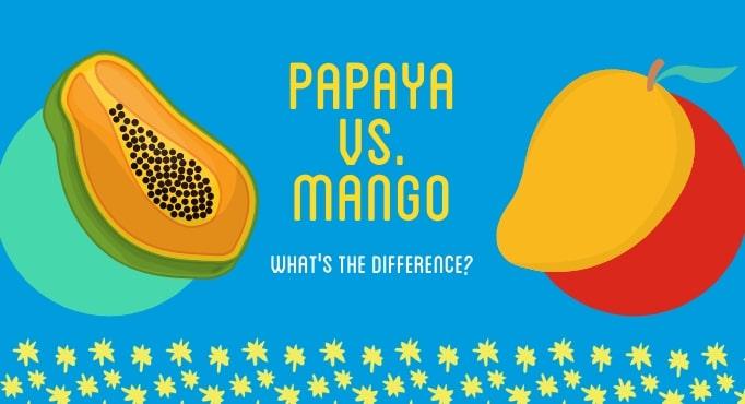 Papaya vs. Mango 1