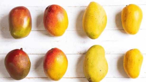 Mango Benefits 1